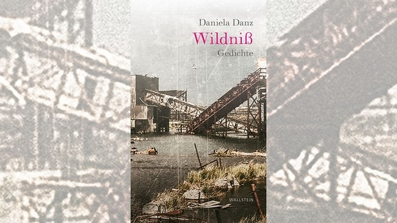 Cover Wildnis
