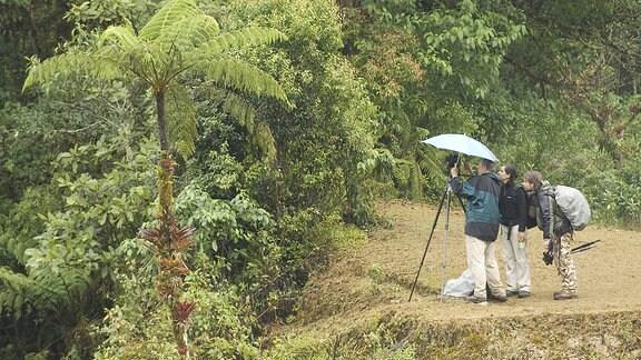 Drei Leute im Wald von Mexiko