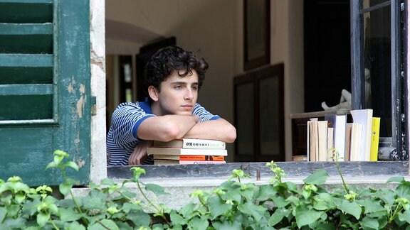 Teenager mit schwarzen Haaren schaut verträumt aus dem offenen Fenster. Stützt sich dabei auf Bücher. Elio (Timothée Chalamet)