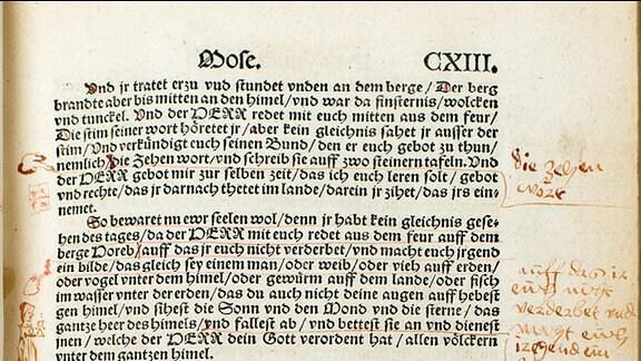 Seite aus 1534er Bibel mit handschriftlichen Einträgen von Felicitas von Selmenitz
