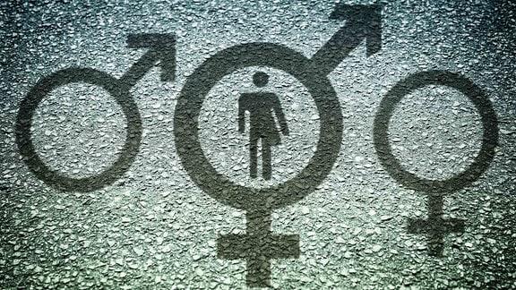 Piktogramm von Mann und Frau gemischt, Intersexualität