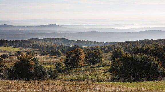 Neblige Landschaft in der Langen Rhön