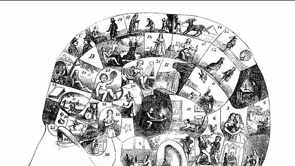 """Das menschliche Gehirn mit dargestellten Aktivitäten in verschiedenen Rindenfeldern, Menschenbild aus dem 19. Jahrhundert, aus """"Der Mensch, die Rätsel und Wunder seiner Natur"""", Dr. Zimmermann, Berlin."""
