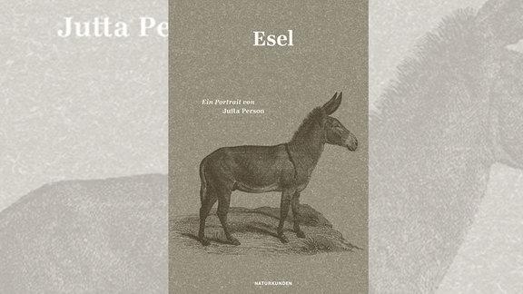 Über das Zaudern. Oder: Der Esel als philosophischer Stehenbleiber.