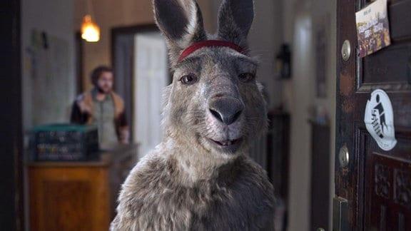 Känguru-Chroniken,Film