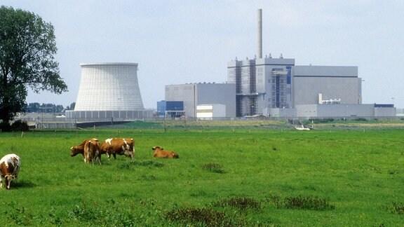 Kernkraftwerk Kalkar