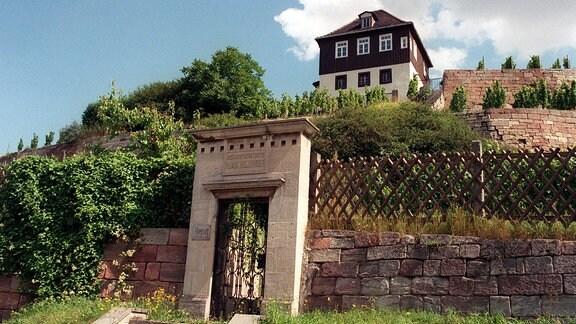 Romantisch gelegen ist der Max-Klinger-Weinberg in Großjena bei Naumburg am Saale-Unstrut-Tal. Das ehemalige Anwesen des bekannten Bildhauers, Malers und Grafikers (1857-1920) wird von einem gepflegten Weinberg, einem kleinen Museum und dem ehemaligen Wohnhaus sowie seinem Grab geprägt.