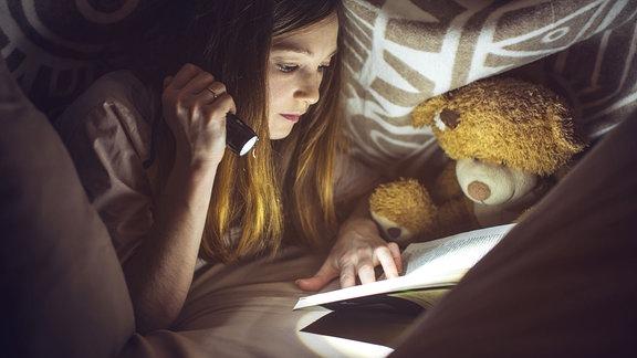 Mädchen liest mit Taschenlampe unter der Bettdecke. Neben ihr sitzt ein Teddy.