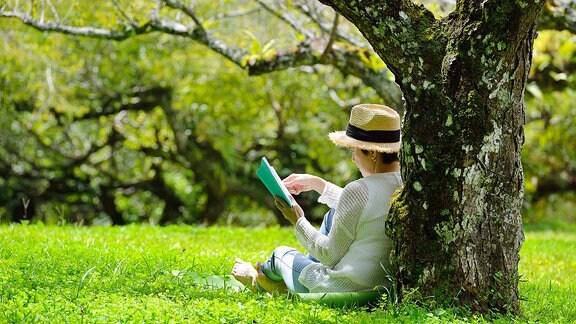 Frau sitzt auf einer Wiese und liest ein Buch.