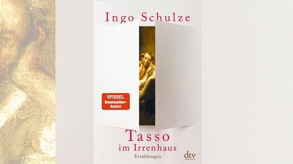 Ingo Schulze, Tasso im Irrenhaus, Buch, Cover