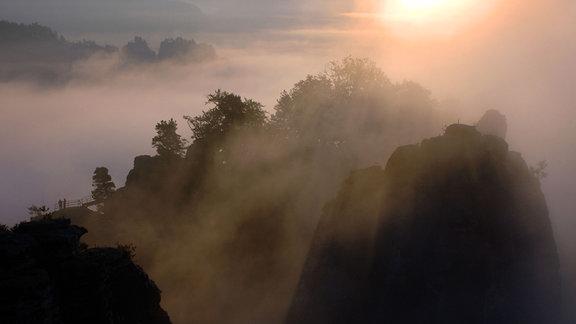 Morgennebel hüllt die Basteifelsen in der Sächsischen Schweiz ein.