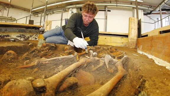 Massengrab aus der Schlacht von Lützen wird im Landesmuseum für Vorgeschichte Halle von Grabungsleiter Olaf Schubert untersucht