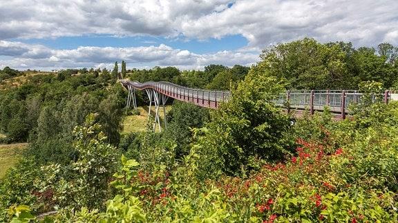 Drachenschwanzbrücke auf dem Gelände Neue Landschaft bei Ronneburg