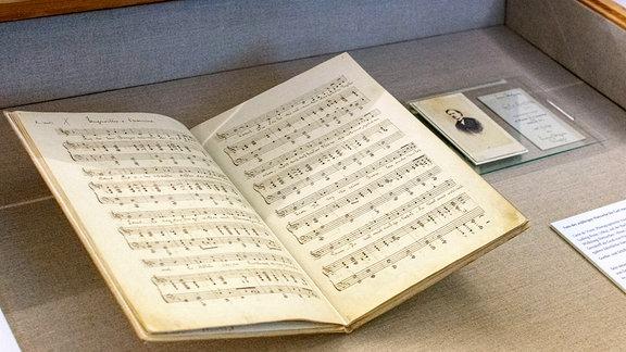 """Bei den in der Vitrine gezeigten Exponaten handelt es sich um Nietzsches Liederheft """"'Acht Lieder als Weihnachtsgabe an Mutter und Schwester', für Singstimme und Klavier, Dezember 1864"""" und eine Fotografie des 20jährigen Nietzsche für seinen Freund Carl von Gersdorff"""