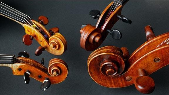 Saiteninstrumente des MDR-Sinfonieorchesters