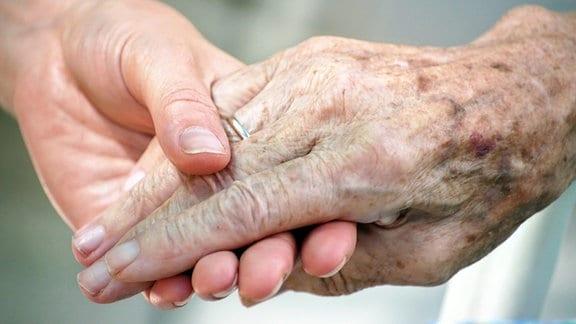 Die Hand einer jungen Person hält die Hand einer älteren.