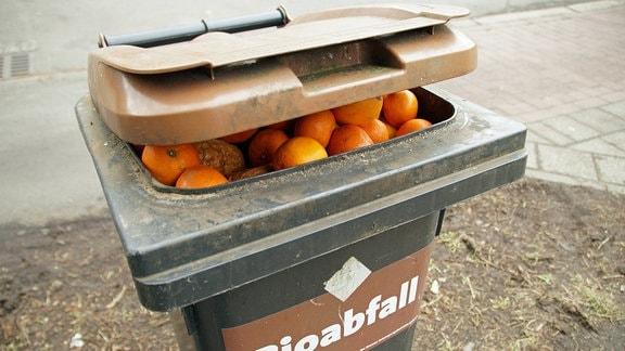 Bio-Abfalltonne, gefüllt mit Apfelsinen