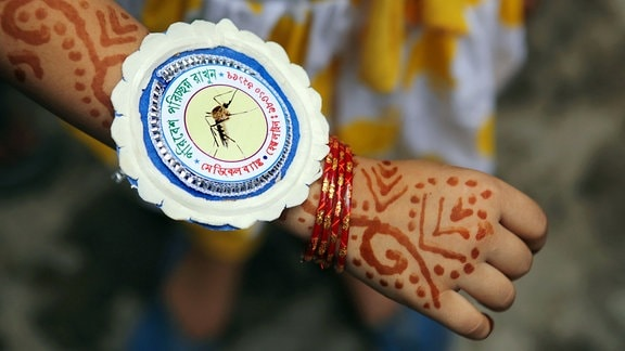 Rakhi mit einem Moskito an einem Handgelenk