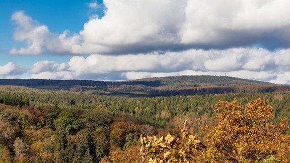 Blick ins Selketal im Herbst