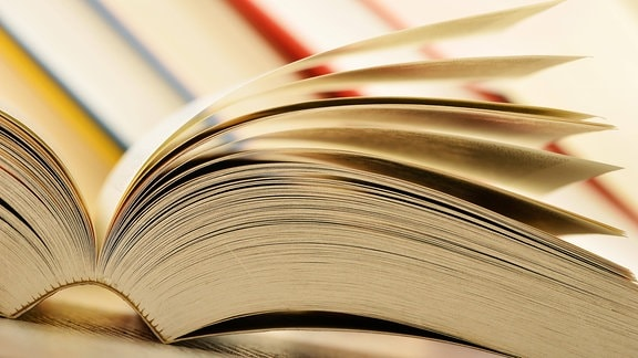 Ein Buch.