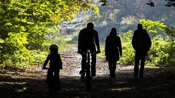 Spaziergänger und Radfahrer in einem Wald.