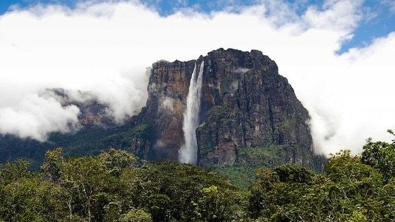 Salto Angel, der höchste Wasserfall der Welt, Canaima Nationalpark, Venezuela, Südamerika.