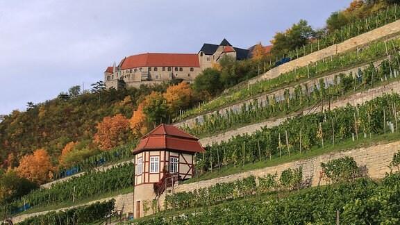Das barocke Weinberghäuschen auf dem Herzoglichen Weinberg unterhalb der Neuenburg in Freyburg (Sachsen-Anhalt)