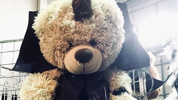 WGT-Teddy