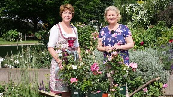 Zwei Frauen vor mehreren Töpfen mit Rosen