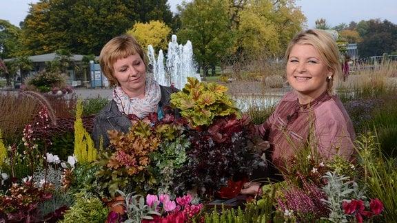 Zwei Frauen stehen hinter einem Tisch mit vielen bunten Herbstpflanzen.