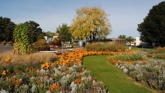 Blumenbeete im egapark