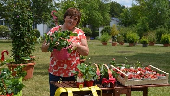 Beerenexpertin Roswitha Zehelein-Schemm steht hinter einem  Tisch mit Erdbeeren und hält eine Erdbeerampel in den Händen.