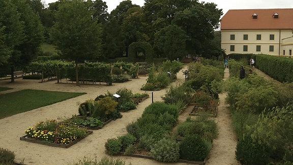 Kräutergarten in Valtice