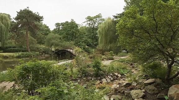 Der Botanische Garten in Breslau