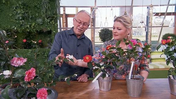 Diana spricht mit Gartenbauingenieur Wolfgang Friebel über Kamelien