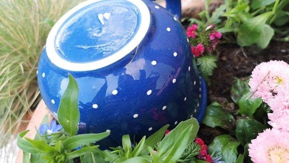 Eine Tasse steht verkehrt herum in einem Blumenkübel.