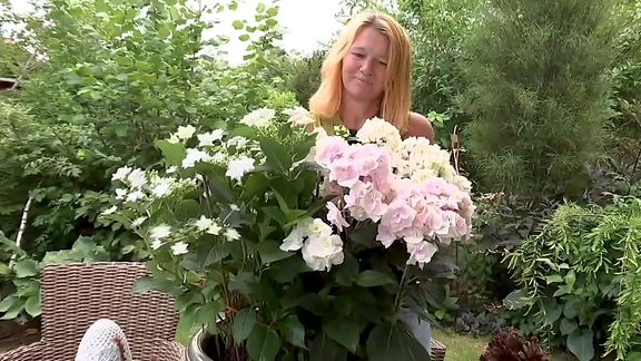 Annett Heinecke mit Hovaria-Hortensien