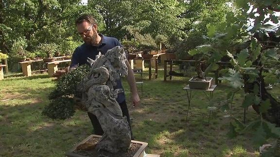 Ein Mann neben einem Olivenbaum