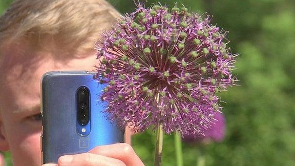 Junger Mann fotografiert Pflanze mit Smartphone