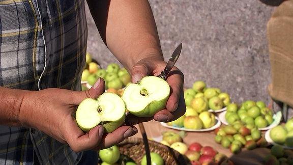 Ein aufgeschnittener Apfel im Hintergrund sind weitere Sorten