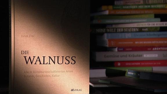 Buch - Jonas Frei - Die Walnuss