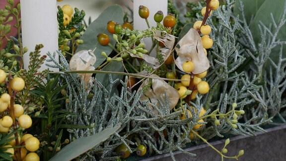 Aus dem Geflecht aus Nadelholzzweigen, Eukalyptus und Stechpalmen ragen die trockenen Blütenstände eines Silbertalers.