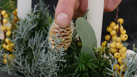 Ein Kapgrün-Zapfen ragt aus dem Gesteck hervor.