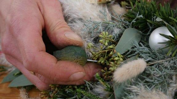 Ein Mann steckt einen grünbemalten Blütenstand vom Eukalyptus als Dekoration in einen Kranz.