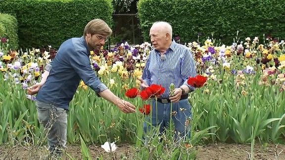 Zwei Männer in einem Garten