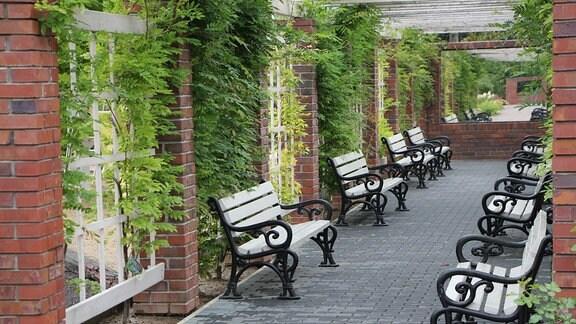In zwei gegenüberliegenden Reihen aufgestellte Gartenbänke in einem Gang mit Kletterpflanzen im Mustergartenreich Kapias in Goczalkowice-Zdrój