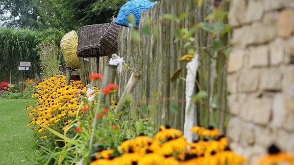 Bauerngarten mit gelb blühenden Pflanzen im Mustergartenreich Kapias in Goczalkowice-Zdrój