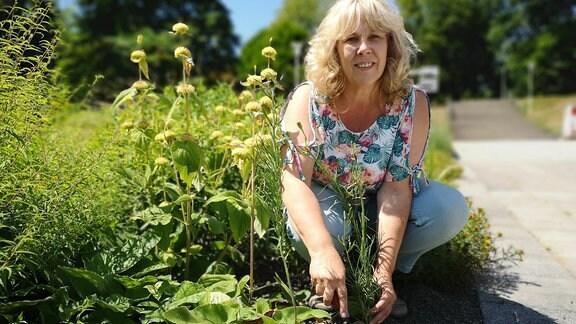 Petra Schollmeier, die Regionalleiterin der Gesellschaft für Staudenfreunde, arbeitet an einem Beet.