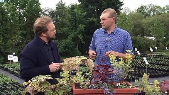 MDR Garten-Moderator Jens Haentzschel im Gespräch mit Gartenmeister Pascal Klenart.