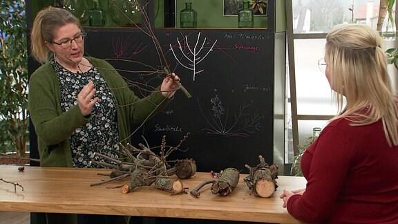 Zwei Frauen mit Ästen in einem Fernsehstudio